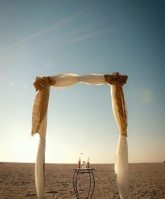 Wild Wedding: The Ceremony Set Up