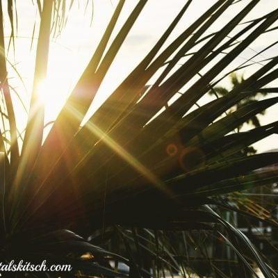 Sharing Some Florida Sunshine