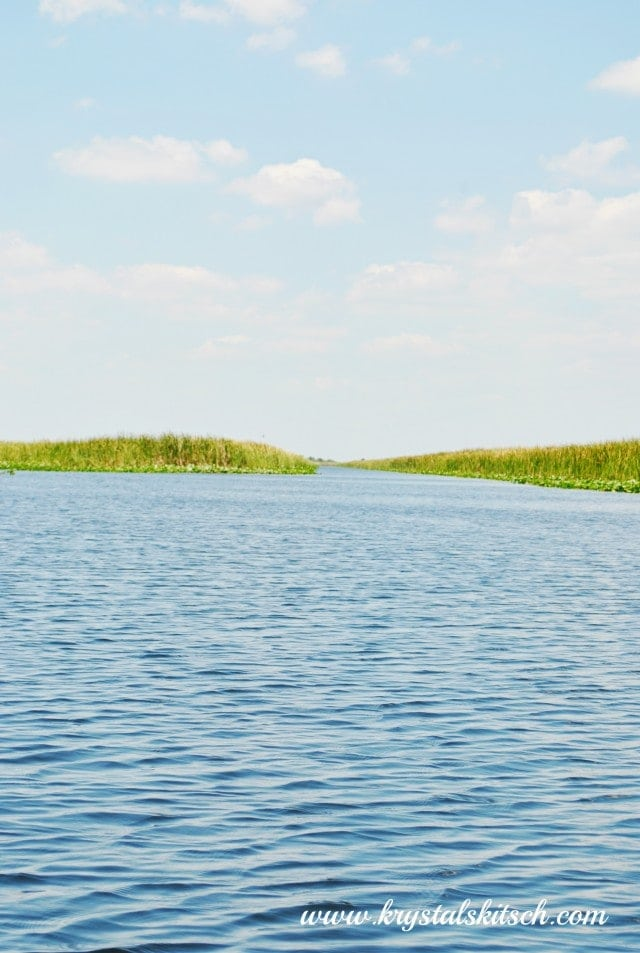 Everglades Holiday Park Review