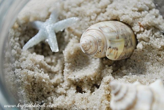 DIY Vacation Shell Jar