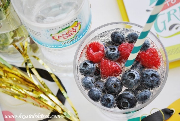 Canada Dry With Fresh Fruit