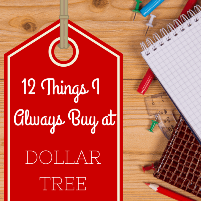 Dollar Tree Essentials: 12 Things I Always Buy