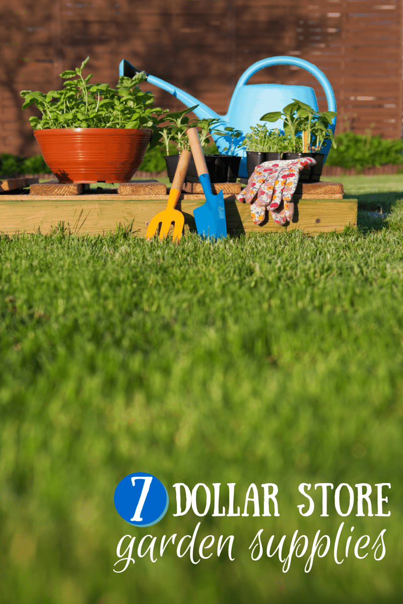 Dollar Garden Supplies Create A Garden For Cheap