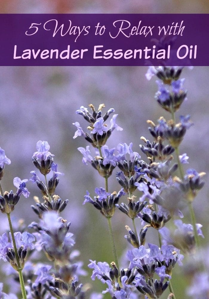 5 Ways to Relax with Lavender Essential Oils