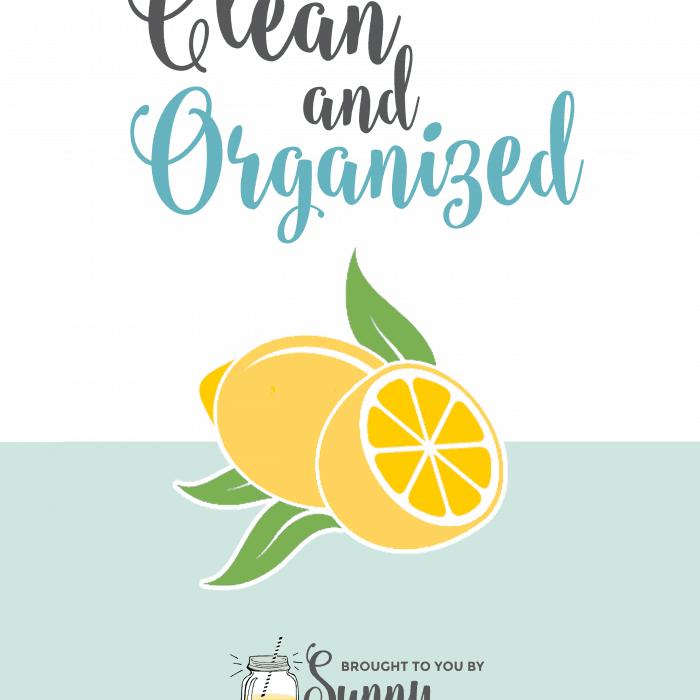 Spring Dejunk: Spring Clean All Year Round