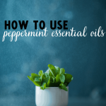 10 Uses for Peppermint Essential Oils