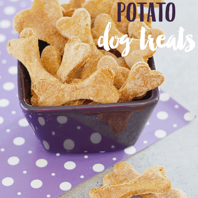 Sweet Potato Dog Treats