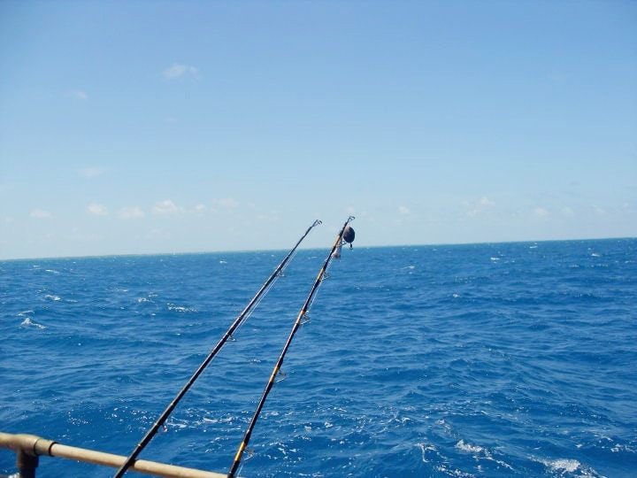 The ultimate florida road trip sunny sweet days for Florida free fishing days