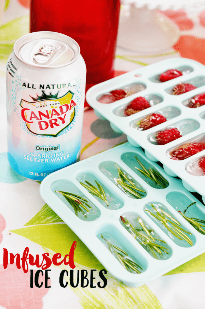 Infused Ice Cubes