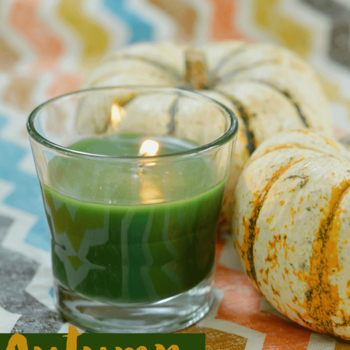 My Favorite Fall Essentials From the Acorn Box