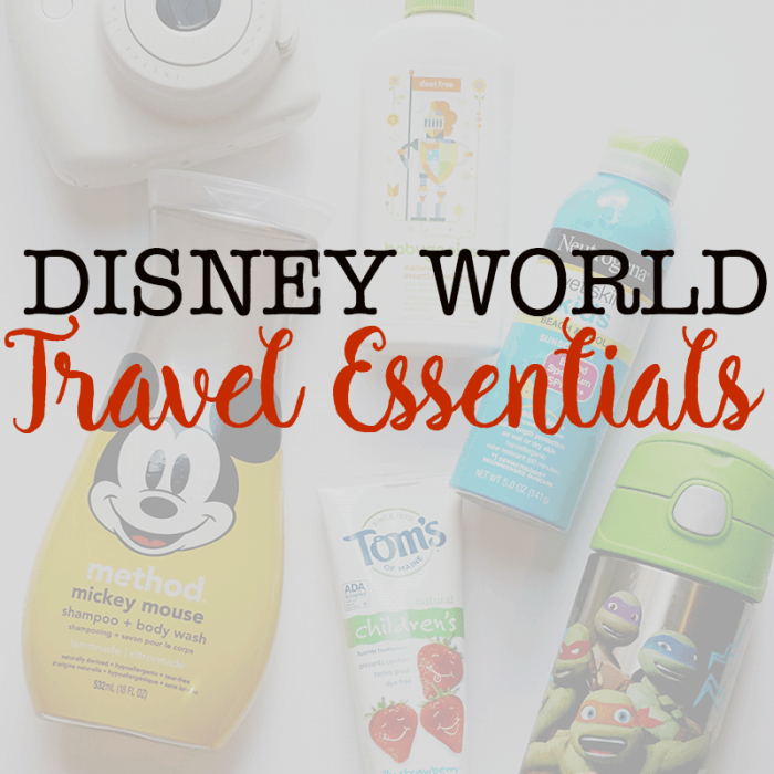 Disney World Travel Essentials: 3 Tips For a Spontaneous Theme Park Day