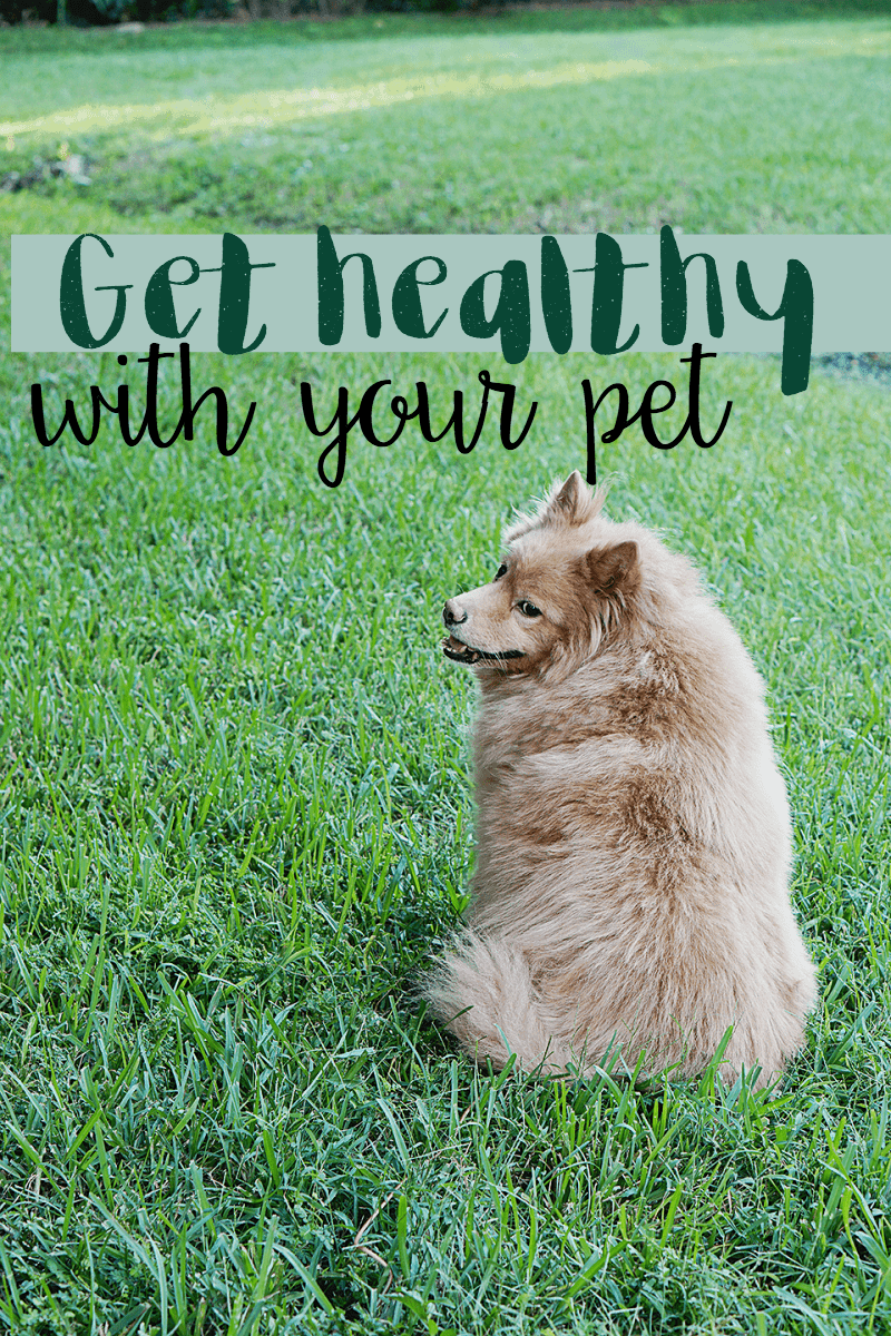 Get Healthy With Your Pet