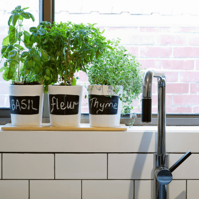 How to Organize Your Kitchen Easily