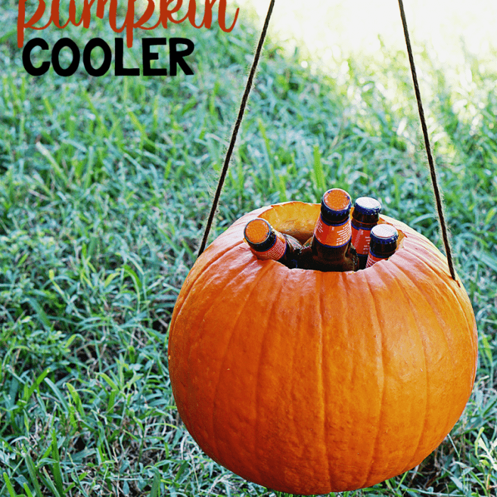 How to Make a Pumpkin Beer Cooler