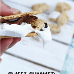 Sweet Summer Cereal S'Mores