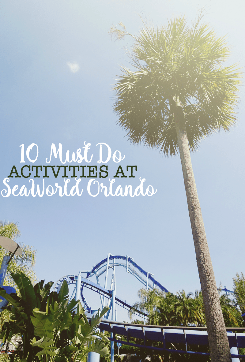 10 Must Do Activities at SeaWorld