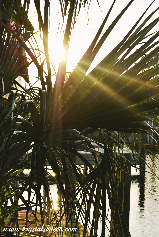 Sunset in Southwest Florida