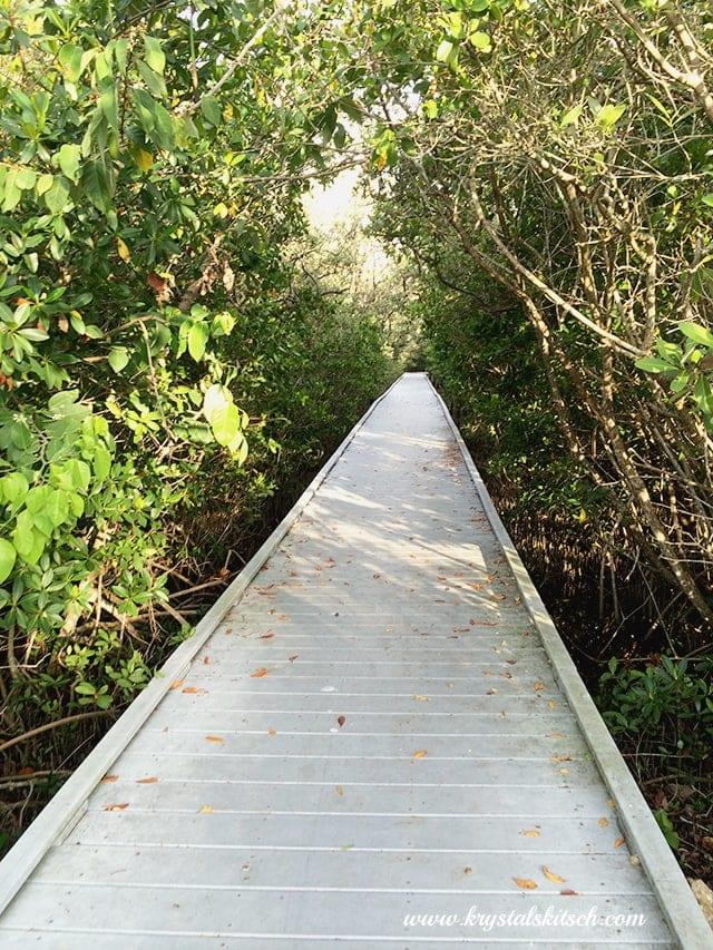 Cape Coral Boardwalk