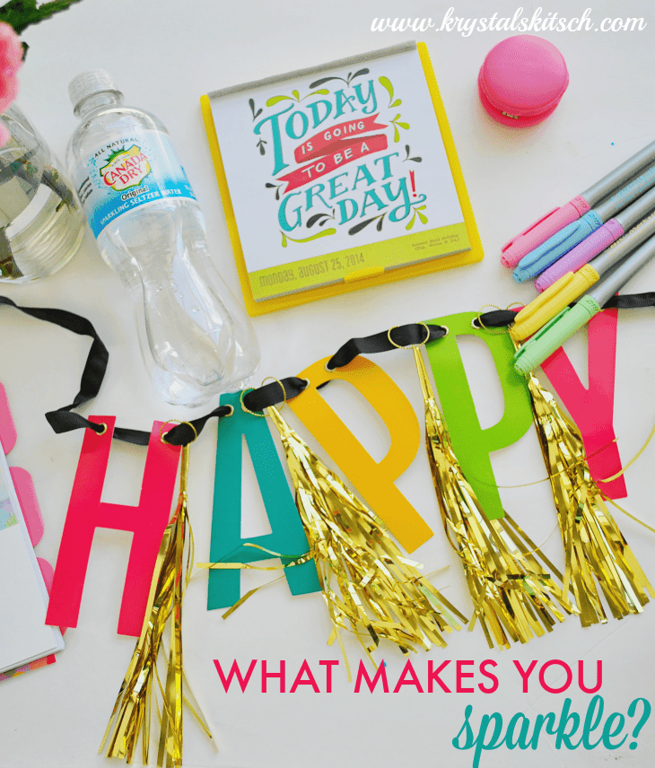 Canada Dry What Makes You Sparkle #shop