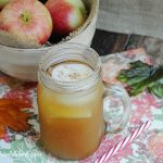 It's Fall Y'all! Apple Cider Margarita Recipe