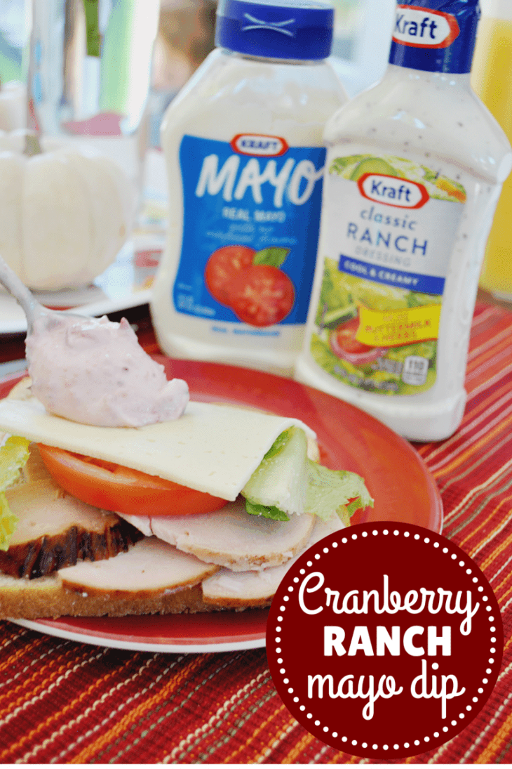 Host a holiday party in a hurry with these printables and easy cranberry mayo recipe!