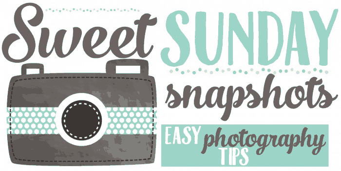 Sweet Sunday Snapshots