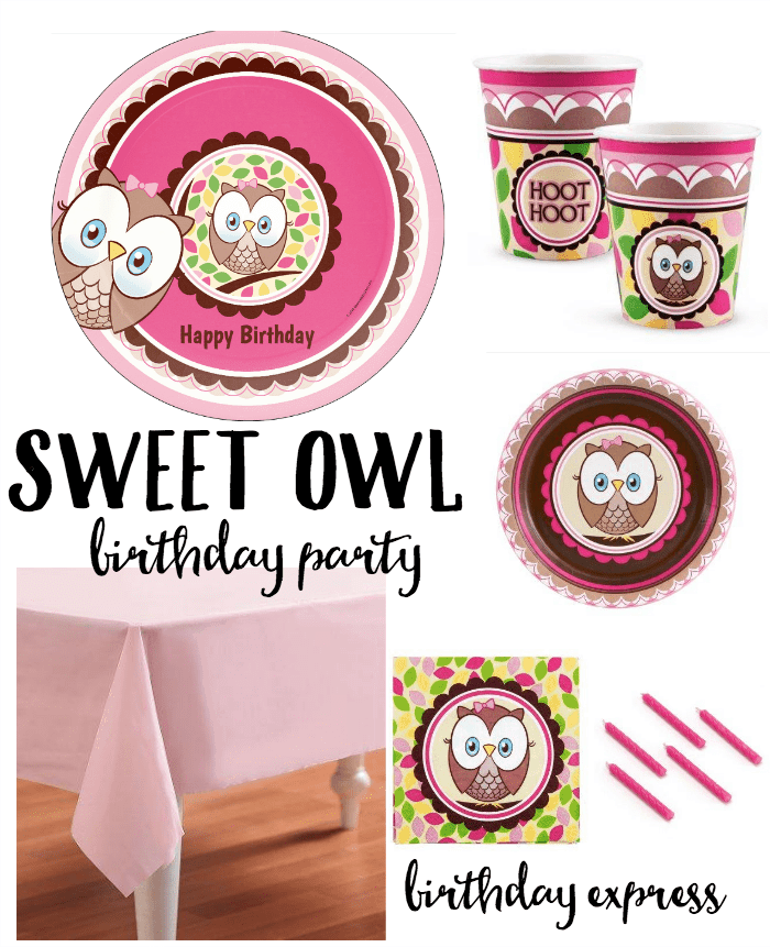 Sweet Owl Birthday Party