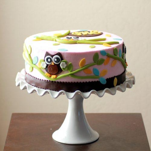 Cake Smash Photography Tips