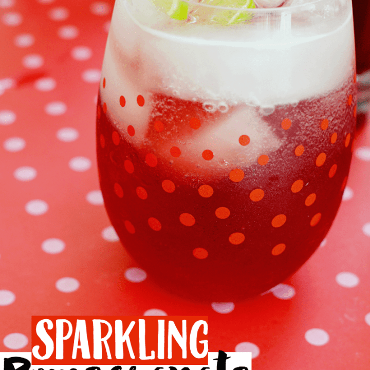 Sparkling Pomegranate Punch