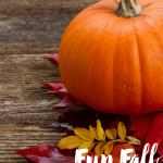 Fun Family Fall Activities