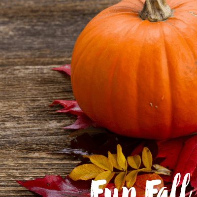 Fun Family Fall Activities