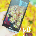 Fall Inspired Photography Ideas