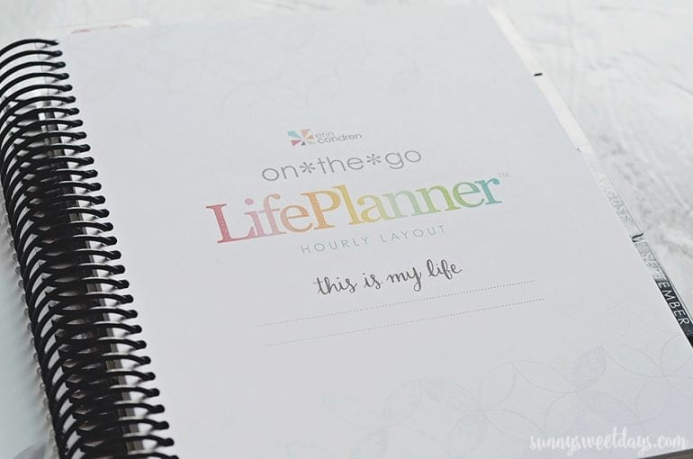 Erin Condren Hourly Life Planner
