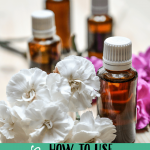 10 Uses for Wintergreen Essential Oil