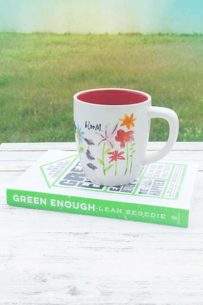 A Guide to the Plastics in Your Home | Green Enough Book Review