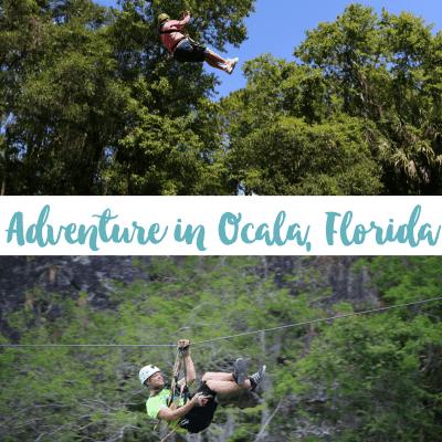 Go Ziplining in Ocala, Florida