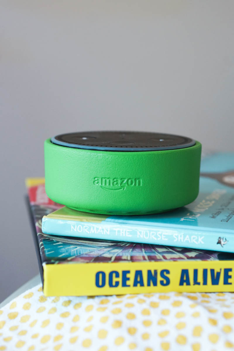 Amazon Echo National Reading Month-2
