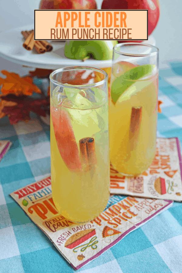 Thanksgiving Cocktails: Apple Cider Rum Punch