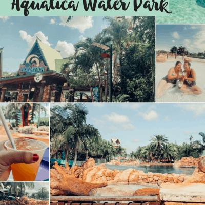 Aquatica at Sea World Orlando