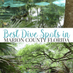 Best Diving Spots in Marion County