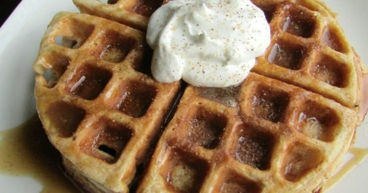 Sweet or Savory Apple Cider Waffles