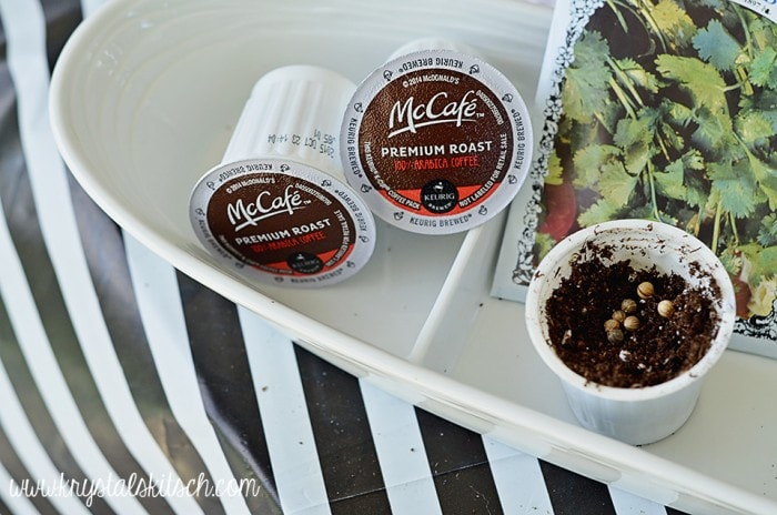 Coffee Pod Garden DIY