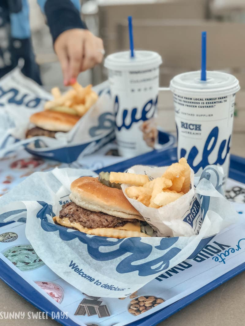 Culvers National Burger Day