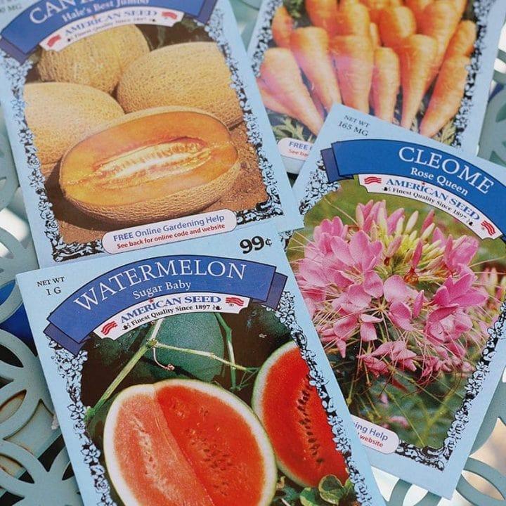 Dollar Tree Garden Supplies