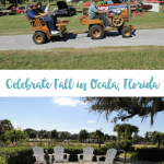 Fall in Love With Ocala, Florida This Fall