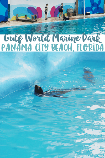 Panama City Beach: Gulf World Marine Park