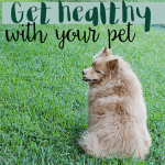 How to Get Healthy With Your Pet