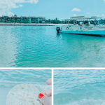 The Ultimate Guide to Marco Island, Florida