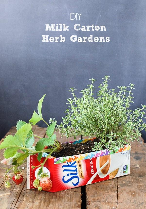 DIY Milk Carton Herb Gardens {tutorial}