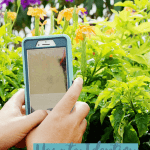 How to Identify Plants on the Go | PlantSnap App Review
